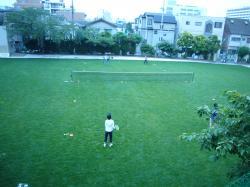 校庭テニス