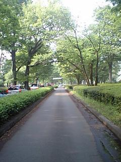 20080427小金井公園入り口