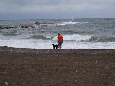 波の音が怖いでアルーーー!