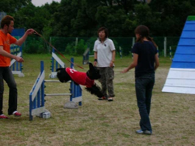 跳ぶのでアル~☆