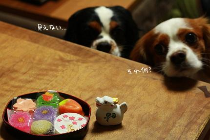 京菓子と辰