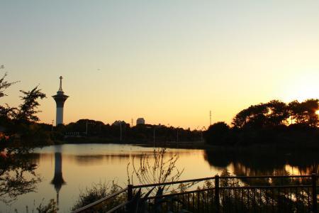 20111028 緑地