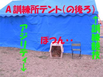 ajirity2112.jpg