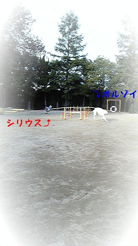20081231160629