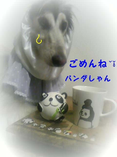 20090912112559