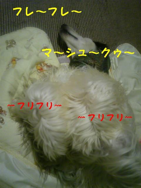 20091006160103