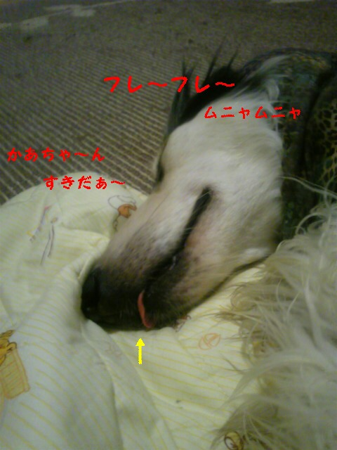 20091006160104