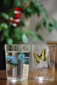 ホテルバタフライのグラス