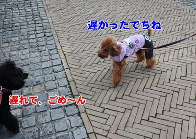 001_20111204140407.jpg