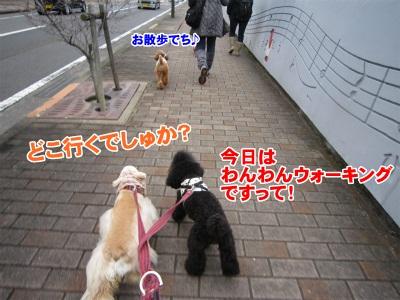 001_20111217201148.jpg