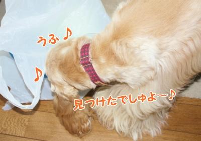 001_20120129224050.jpg