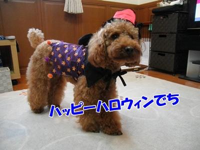 002_20111030211034.jpg