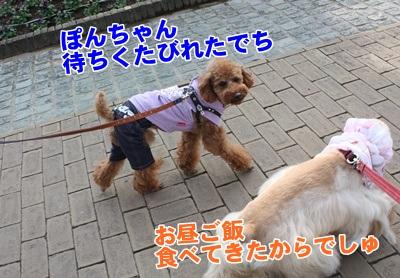 002_20111204140407.jpg