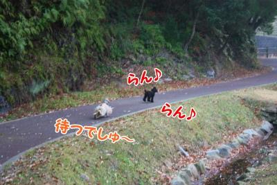 002_20120108211640.jpg