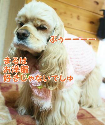 002_20120130214103.jpg