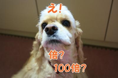 003_20120210214922.jpg