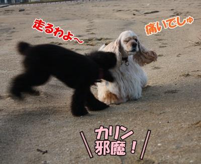 004_20111121213137.jpg