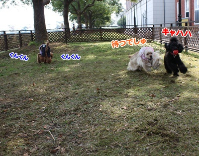004_20111204140407.jpg