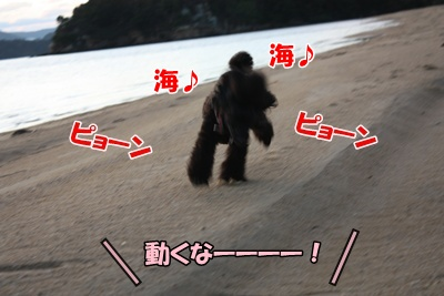 006_20111121213247.jpg