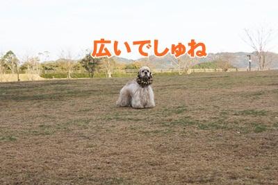 008_20111204213940.jpg