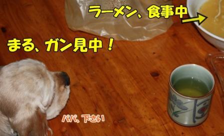 011_20111117211416.jpg