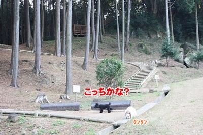 013_20111204213939.jpg