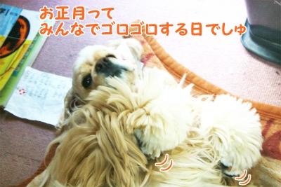 013_20120107205703.jpg