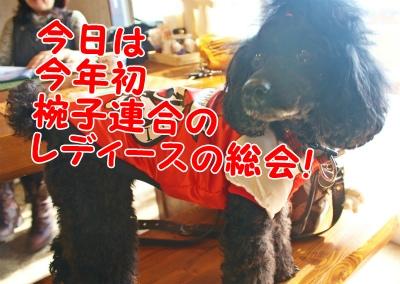 013_20120124201237.jpg