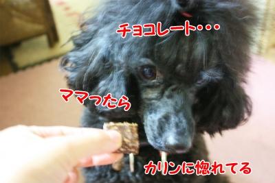 014_20120210215026.jpg