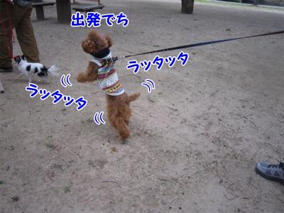 015_20111217201148.jpg