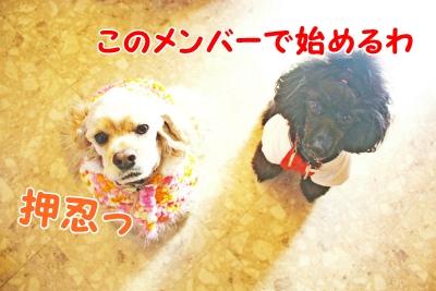 018_20120124201944.jpg