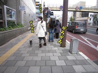 021_20111217201147.jpg