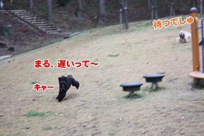 022_20111204214053.jpg