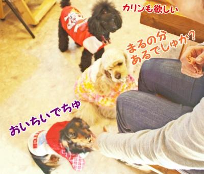 023_20120124213012.jpg