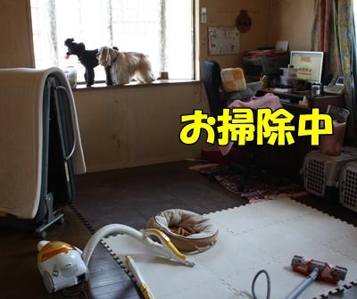 024_20111126164015.jpg