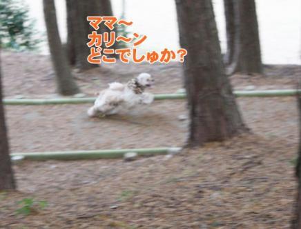 024_20111205221409.jpg
