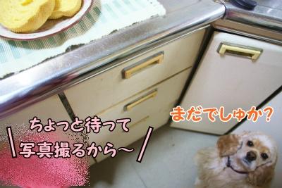 026_20120205172307.jpg