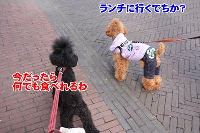 028_20111204150031.jpg