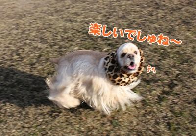 028_20111204214053.jpg