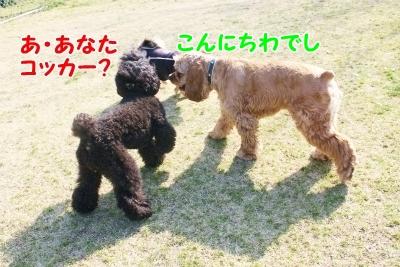 028_20120219234546.jpg