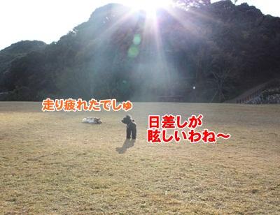 029_20111204214052.jpg