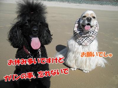 030_20111012232836.jpg