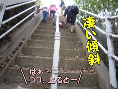 030_20111217201300.jpg