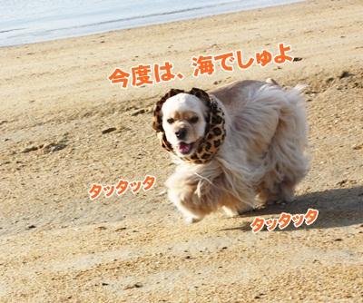 032_20111204214052.jpg