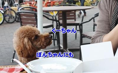 034_20111204151232.jpg