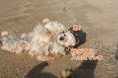 035_20111204215727.jpg