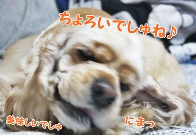 035_20111211212618.jpg