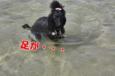 037_20110927225926.jpg