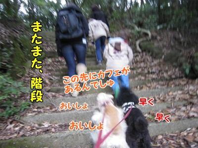 037_20111217213808.jpg