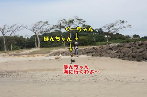 039_20110927231800.jpg